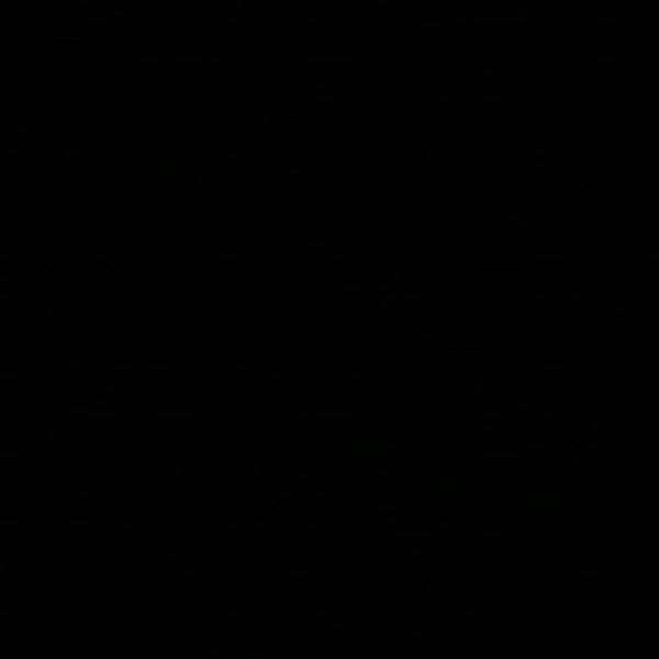{id:0, name:Черный / тонированное стекло, data:[]}