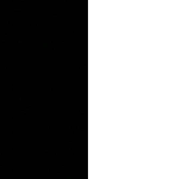 #{id:11, name:черный/белый, data:[]}
