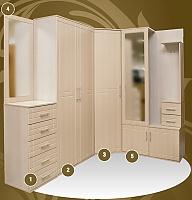 Набор мебели для прихожей Макеенков № 19