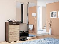 Набор мебели для прихожей РМК Фьюче №3
