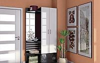 Набор мебели для прихожей Фран Полонез №1
