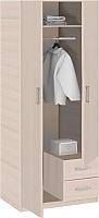 Шкаф 2-дверный Боровичи Эко  с зеркалом, арт. 5.13 Z Эко
