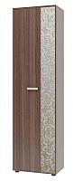 Шкаф для одежды Интеди Лаура, ИД 10.146
