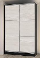Шкаф-купе Боровичи 2-дверный (Модерн) со вставками, 1540х600