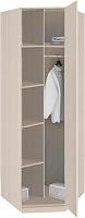 Шкаф для одежды без зеркала Боровичи Лотос АРТ-8.05