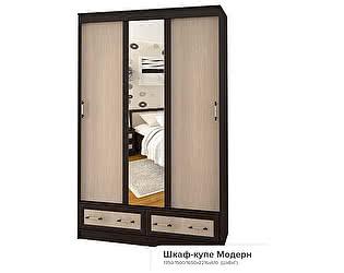 Шкаф-купе BTS Модерн 1,50