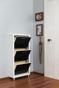 Шкаф обувной Айрон Люкс черное стекло 3с