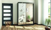 Шкаф-купе SV-мебель Бабочки